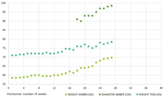 Pregnancy Chart 1 - Green