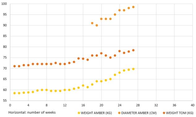 Pregnancy Chart 1 - Yellow