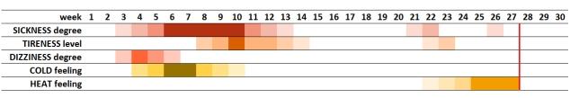 Pregnancy Chart 2 - Yellow