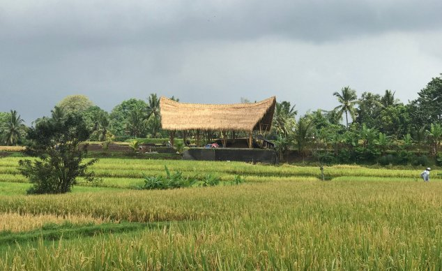 Ubud - countryside